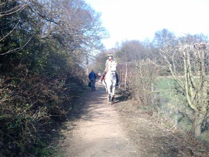 Cyclists and horses sharing a bridleway